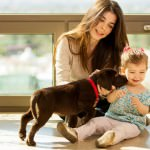 12 Reasons Your Dog Shouldn't Lick Your Baby