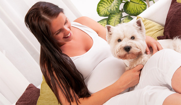 pregnant-woman-and-her-dog