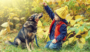 Top 15 Cutest Dog Training Tips Your Kids Are Gonna Love