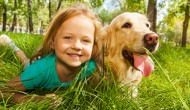 Top 15 Child-Friendly Dog Breeds