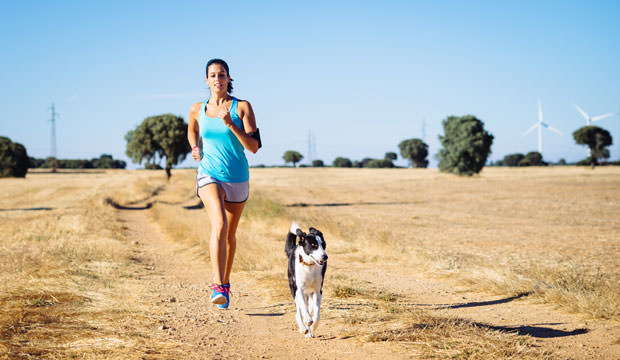How-To-Exercise-With-Your-Dog-1-cover