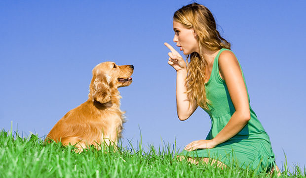 bigstock-young-woman-with-dog-16235621