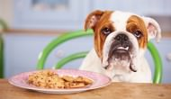 Peanut Butter Cookies For Your Pooch