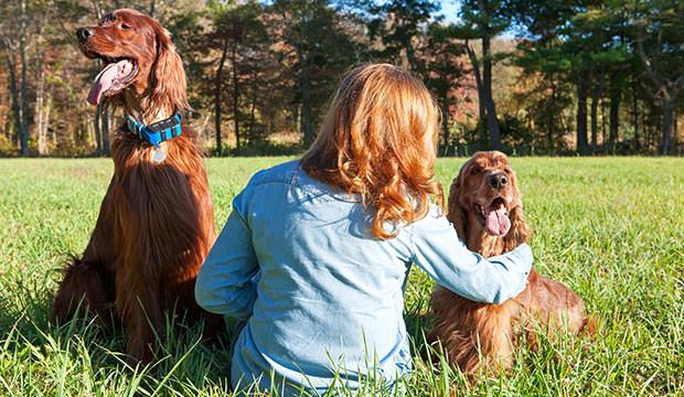 bigstock-Woman-sitting-with-dogs-79595269