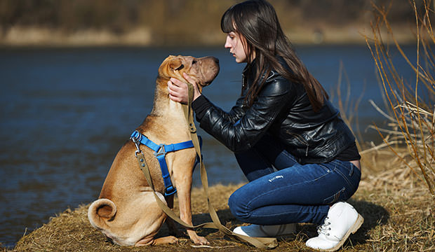 bigstock-girl-with-dog-in-the-park-98773262