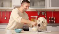 13 Hygiene And Food Safety Tips When Home Cooking For Your Dog