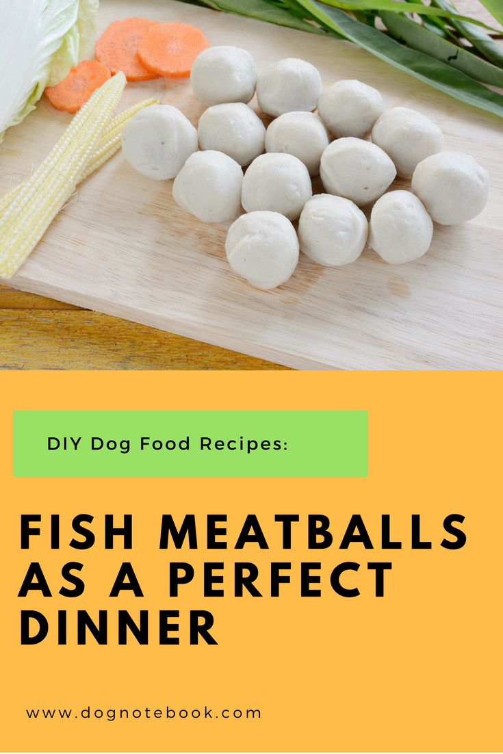 Diy Dog Food Recipes Fish Meatballs As A Perfect Dinner