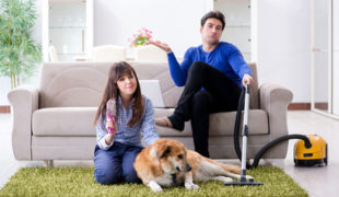 Are Pet Vacuums Worth The Money